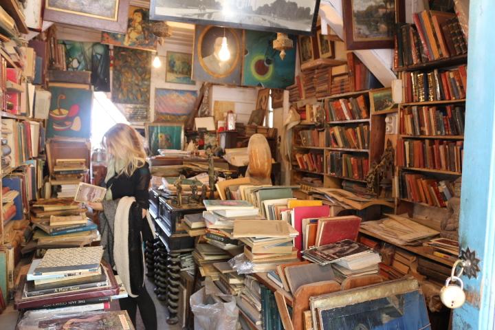 Flo in bookshop in Shimla